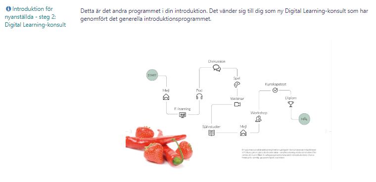 Bilden visar på ett introduktionsprogram och hur det kan grafiskt presenteras på ett trevligt sätt.