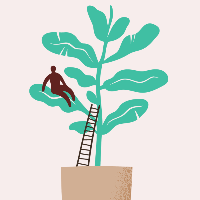Tecknad krukväxt, människa som klättrat upp för stege och satt sig på ett blad.