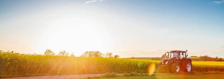 Foto av åker med försommarsol, med traktor i förgrunden.