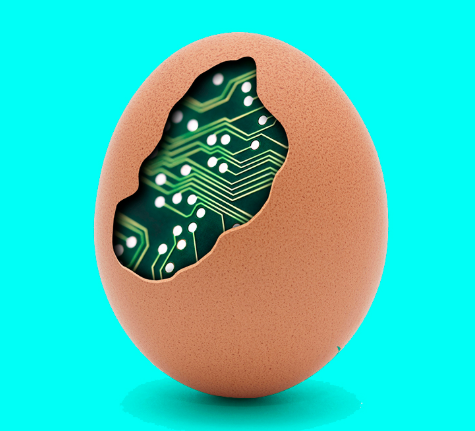 ddr_ägg