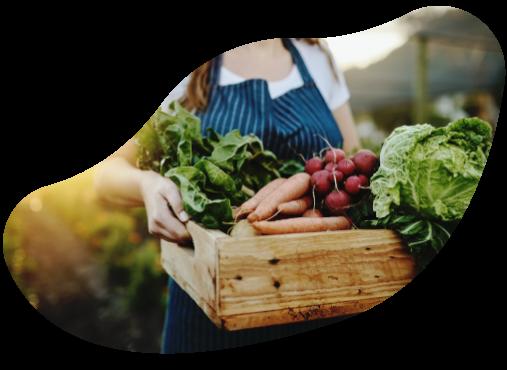 Kvinna håller låda med nyskördade grönsaker i.