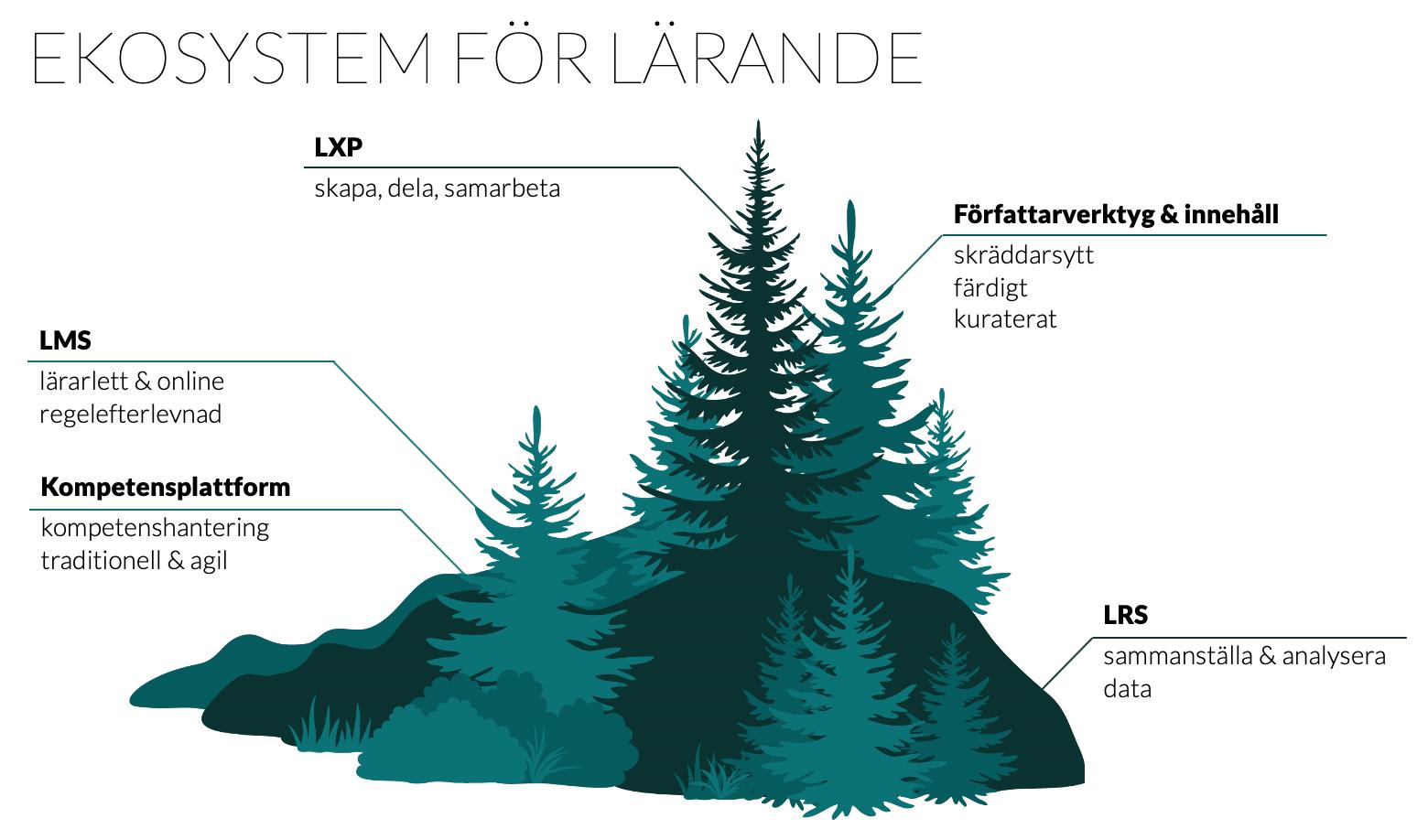 Rubrik: Ekosystem för lärande. Träd med tillhörande underrubriker i form av: LMS, LXP, LRS, Författarverktyg och innehåll samt Kompetens.